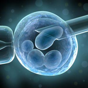 La inseminación artificial